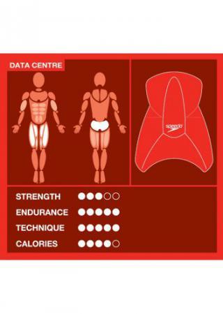 Доска для плавания Speedo Elite Kickboard
